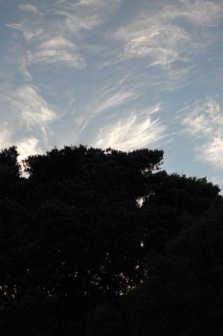 April sky 3